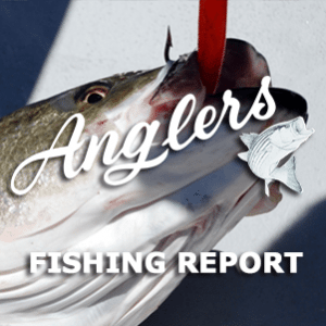 Angler's Fishing Report