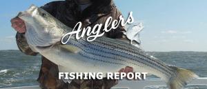 April 29th 2015 fishing report