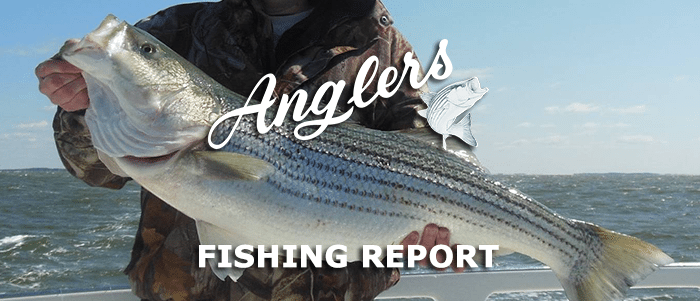 April 29th 2015 fishing report