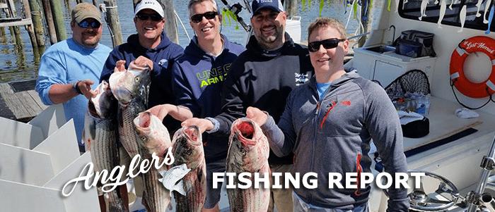 anglers rockfish season