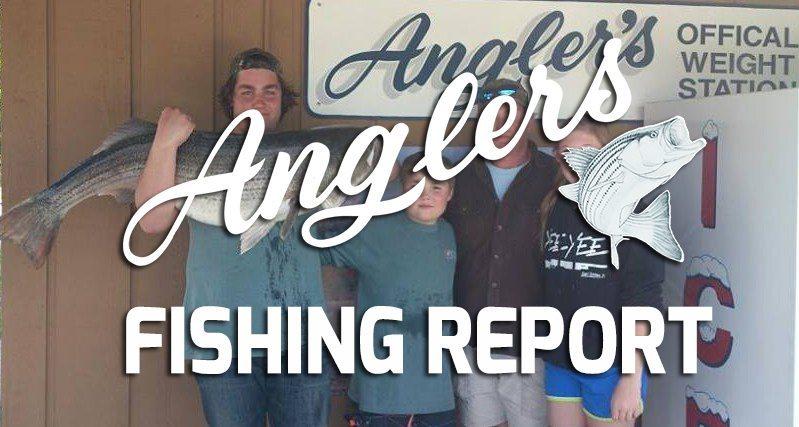 Chesapeake Bay Fishing Report May 8th 2015