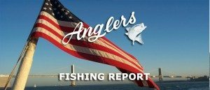 Angler's fishing report 6.30.15