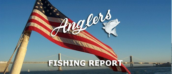 Angler's fishing report 6.30.15