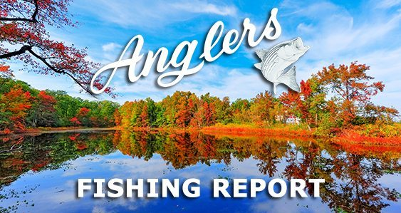 Anglers Fishing Report 9-28-2015