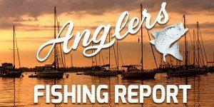 featured image Anglers Chesapeake Bay Fishing Report 10-5-201