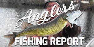 glers Chesapeake Bay Fishing Report November 16th