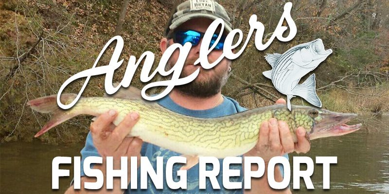 Anglers Chesapeake Bay Fishing Report November 30th