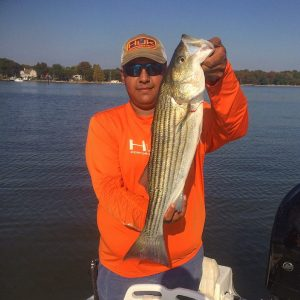"Alex Perez with a nice 27"" keeper Rockfish - Chesapeake Bay Fishing Report Anglers Sport Center"