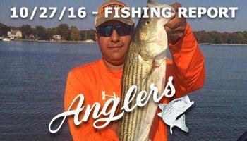 Chesapeake Bay Fishing Report - Anglers Sport Center