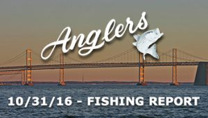 Fishing report from Anglers Sport Center