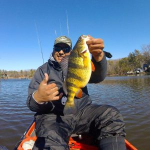 Yellow Perch caught in the Magothy river by Alex Perez with Anglers Sport Center