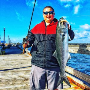 Pro Staffer Mike Fiore shows off a nice Bluefish he caught last week.