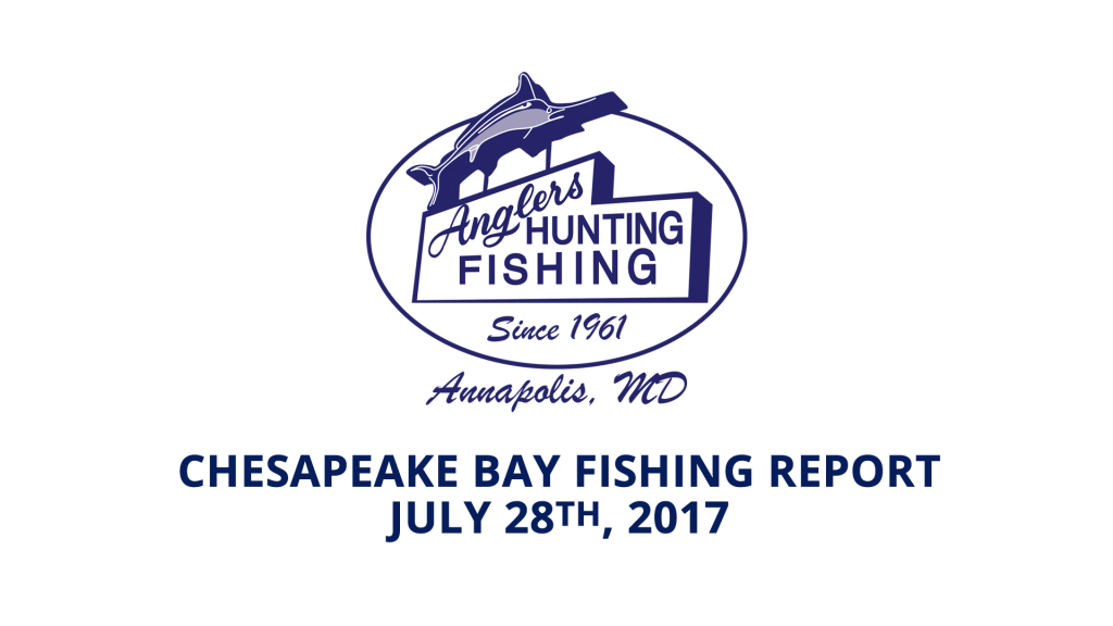 Chesapeake Bay Fishing Report - July 28th, 2017