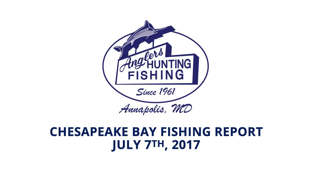 Chesapeake Bay Fishing Report - July 7th, 2017