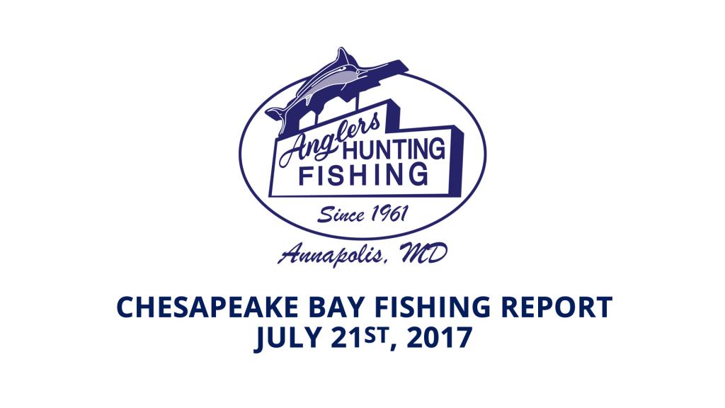 Chesapeake Bay Fishing Report - July 21st, 2017