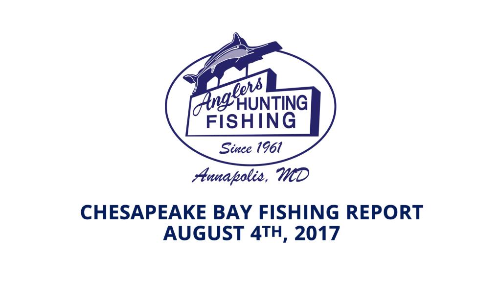 Chesapeake Bay Fishing Report - August 4th, 2017