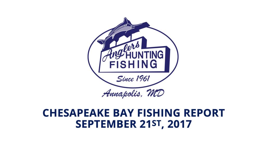 Chesapeake Bay Fishing Report - September 21st, 2017