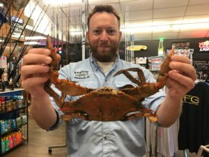 Monster crabs caught in the Magothy River