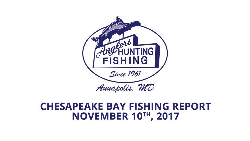 Chesapeake Bay Fishing Report - November 10th, 2017