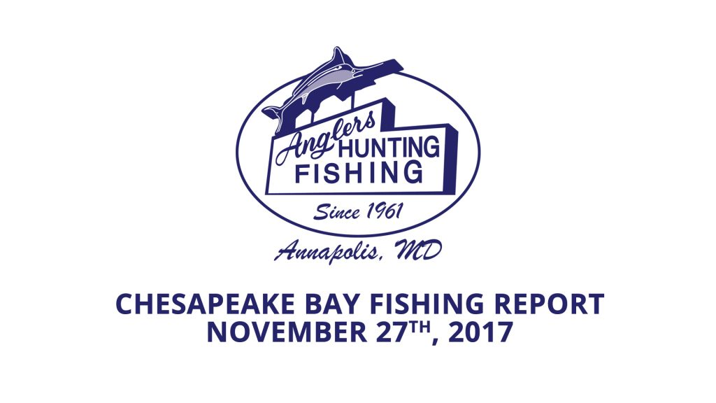 Chesapeake Bay Fishing Report - November 27th, 2017