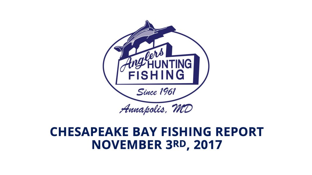 Chesapeake Bay Fishing Report - November 3rd, 2017