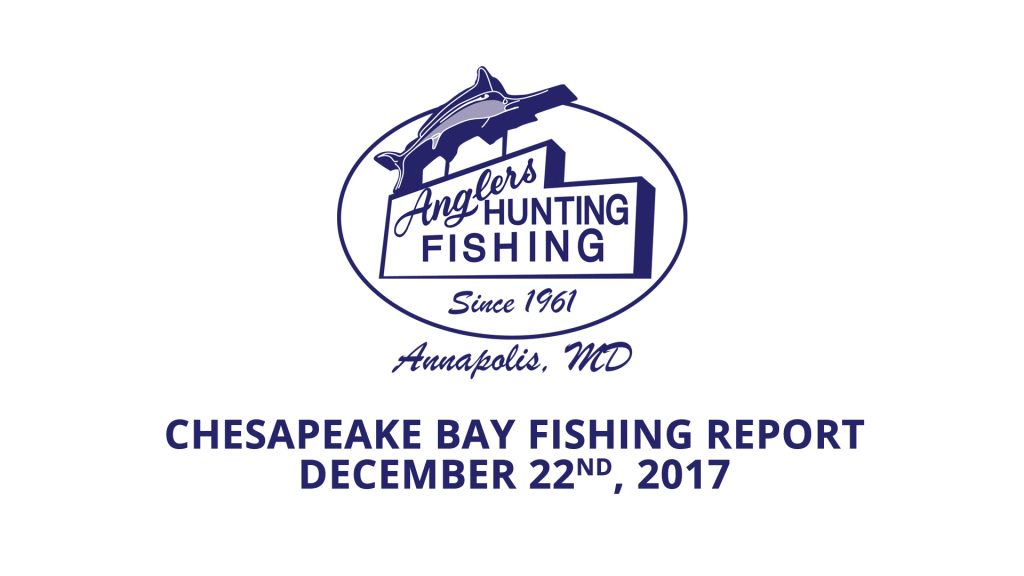 Chesapeake Bay Fishing Report - December 22nd, 2017