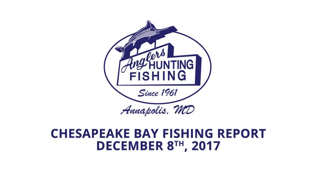Chesapeake Bay Fishing Report - December 8th, 2017