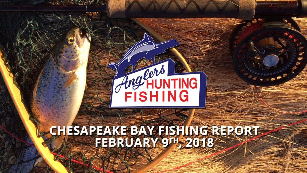 Chesapeake Bay Fishing Report - February 9th, 2018