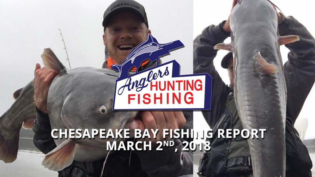 Chesapeake Bay Fishing Report - March 2nd, 2018
