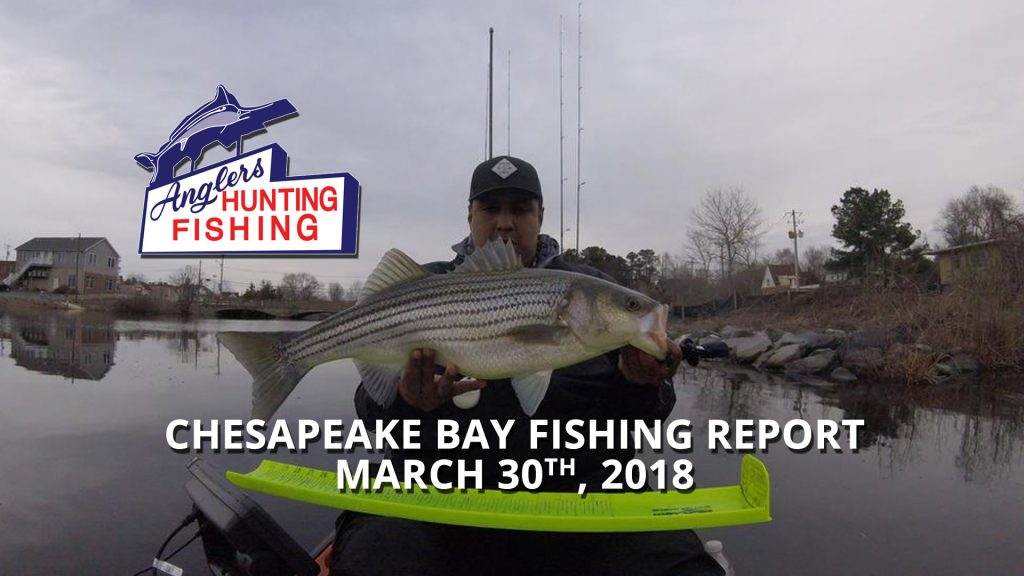 Chesapeake Bay Fishing Report - March 30th, 2018