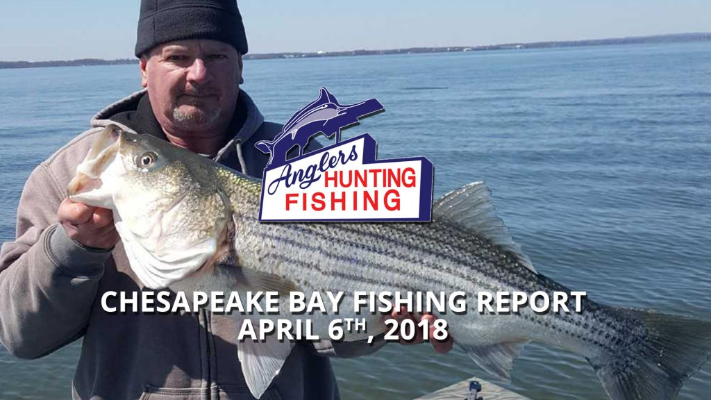 Chesapeake Bay Fishing Report - April 6th, 2018