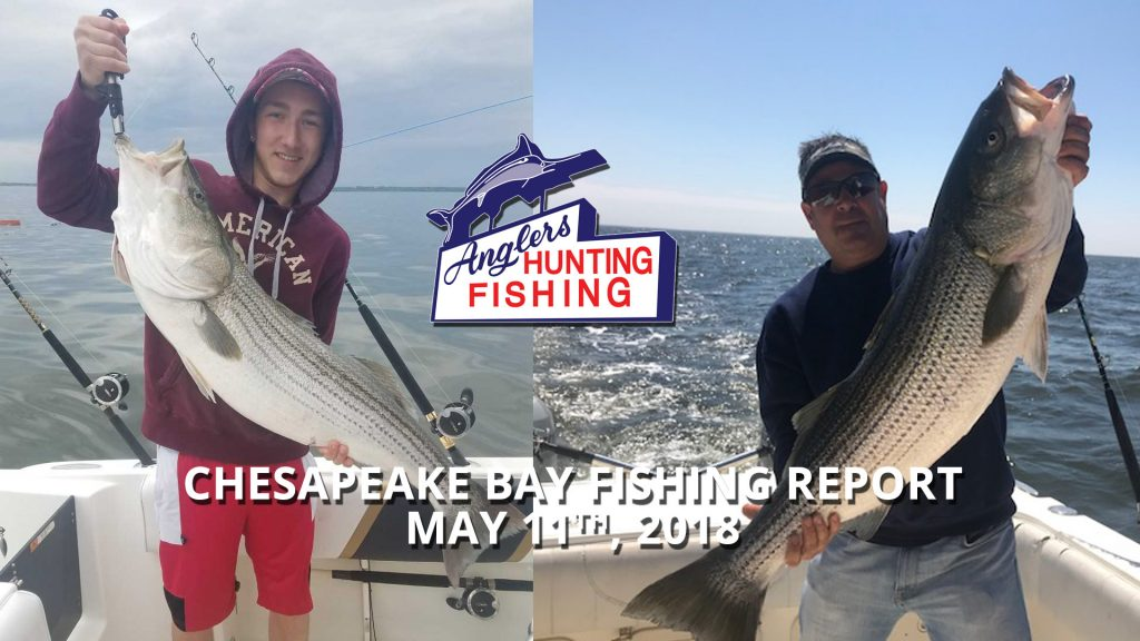 Chesapeake Bay Fishing Report - May 11th, 2018