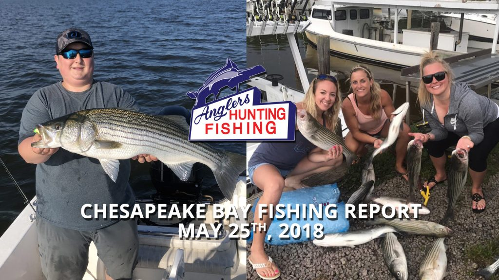 Chesapeake Bay Fishing Report - May 25th, 2018
