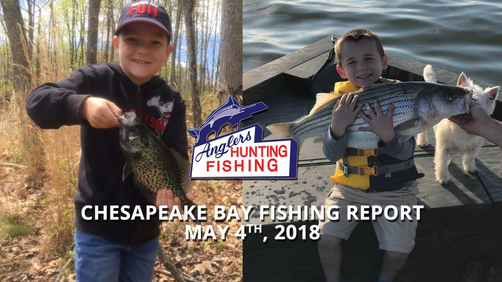 Chesapeake Bay Fishing Report - May 4th, 2018