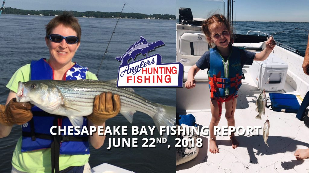 Chesapeake Bay Fishing Report - June 22nd, 2018