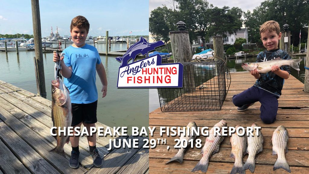 Chesapeake Bay Fishing Report - June 29th, 2018