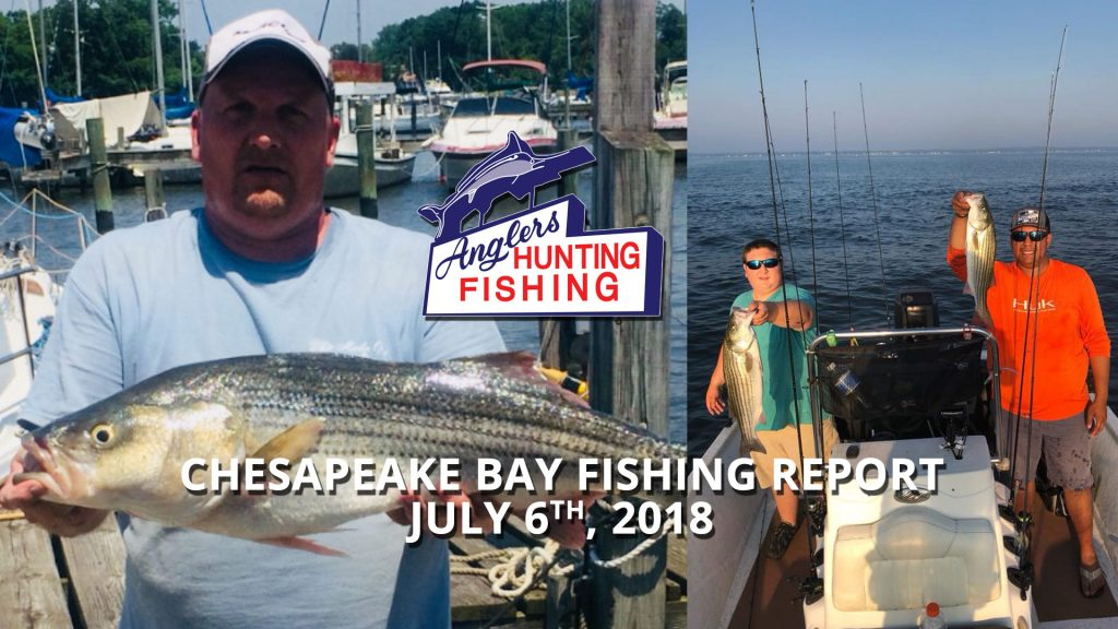 Chesapeake Bay Fishing Report - July 6th, 2018
