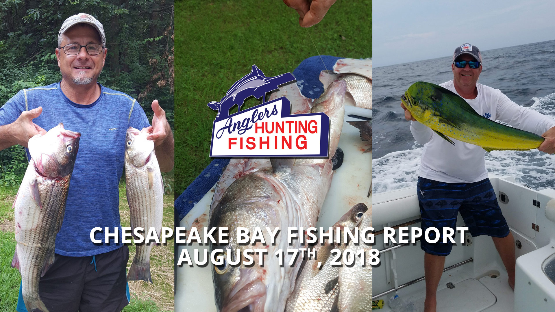 Chesapeake Bay Fishing Report, August 17th, 2018