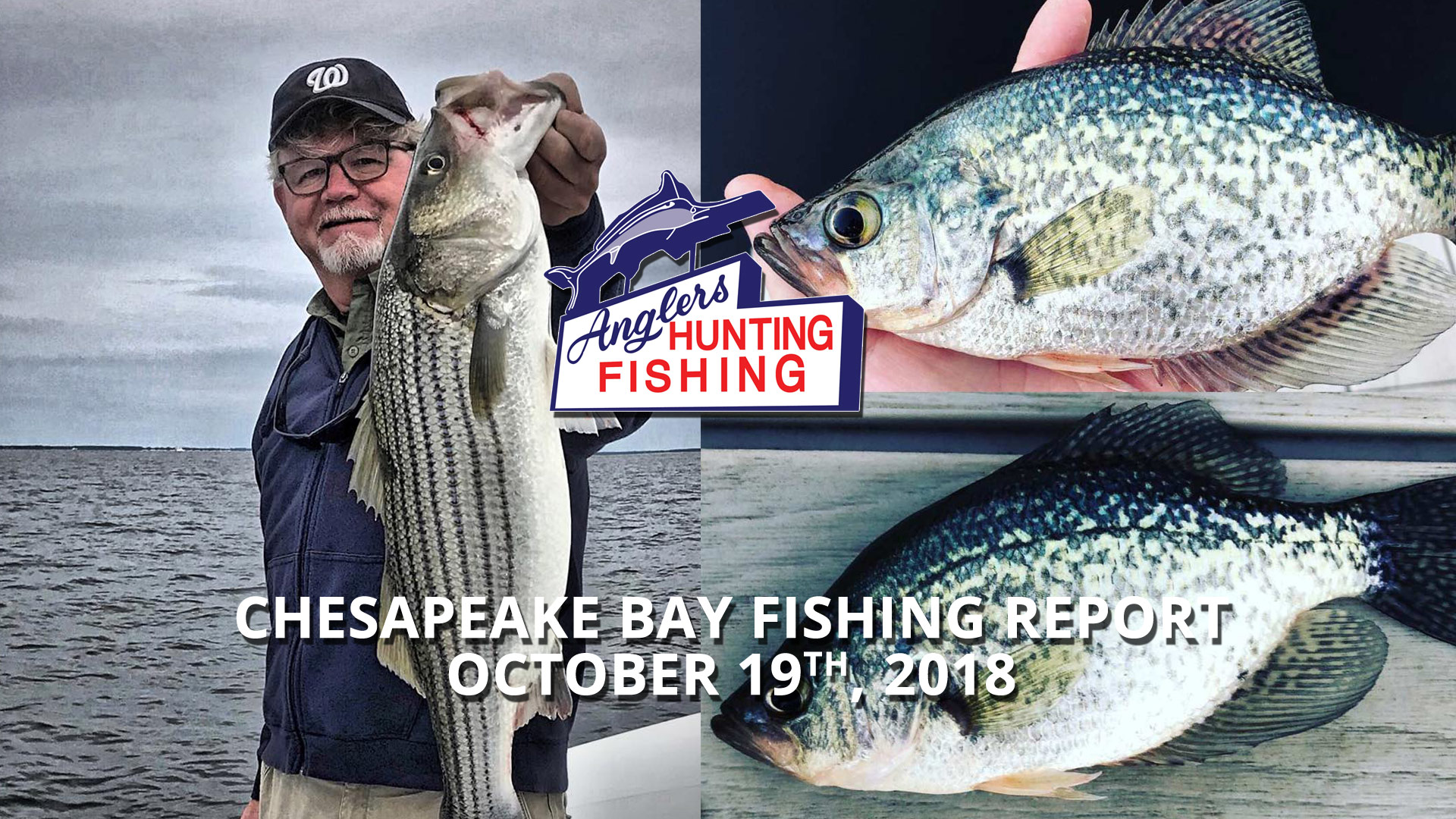 Maryland Fishing Report