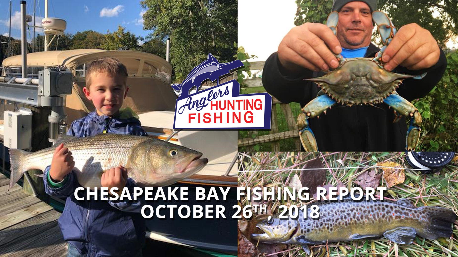 Chesapeake Bay Fishing Report - October 26th, 2018
