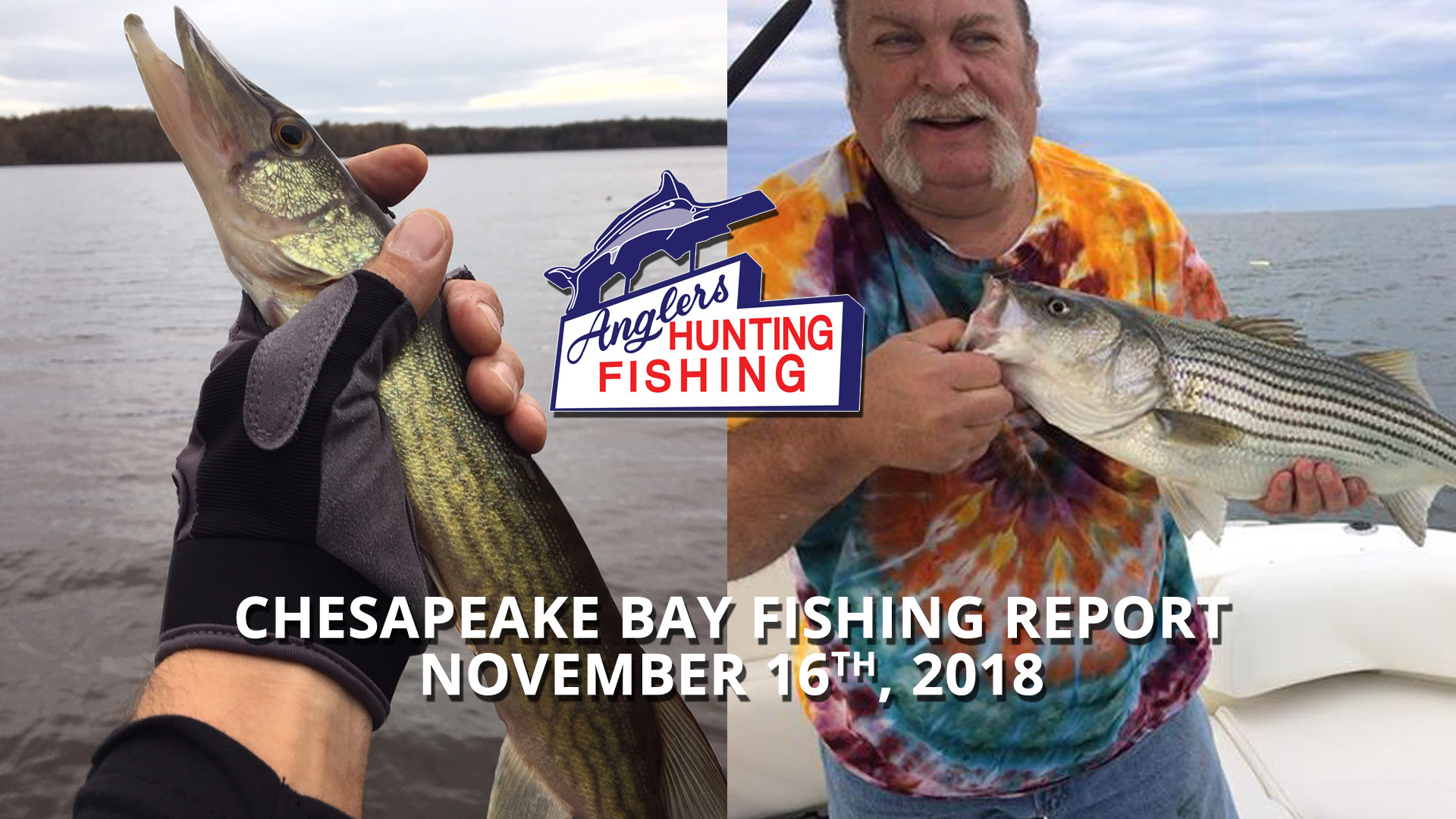 Chesapeake Bay Fishing Report - November 16th, 2018