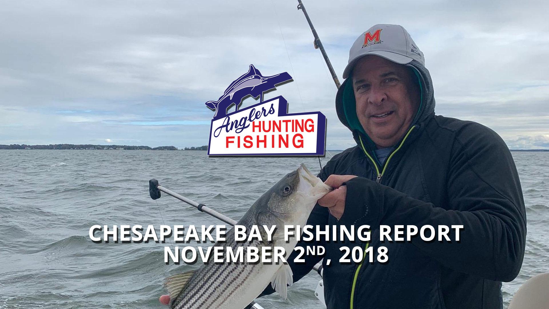 Chesapeake Bay Fishing Report - November 2nd, 2018