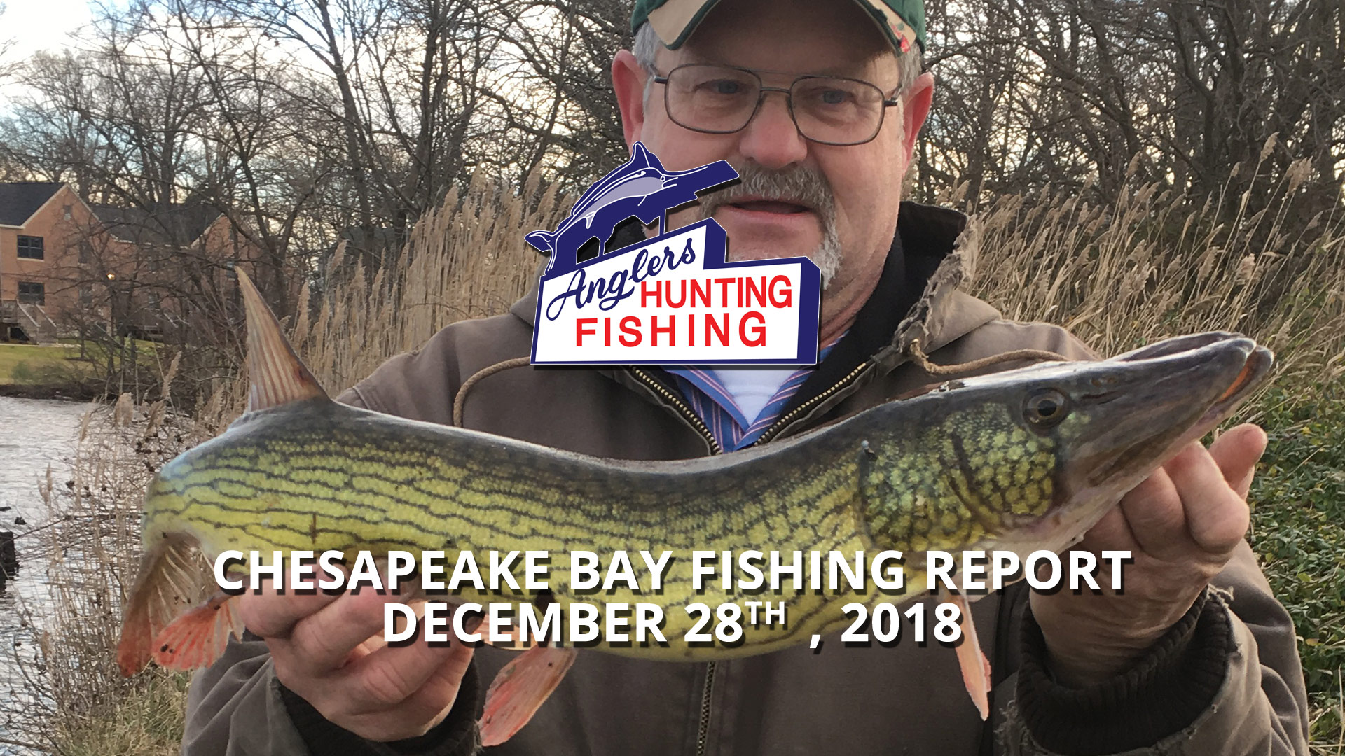 Chesapeake Bay Fishing Report - December 28th, 2018