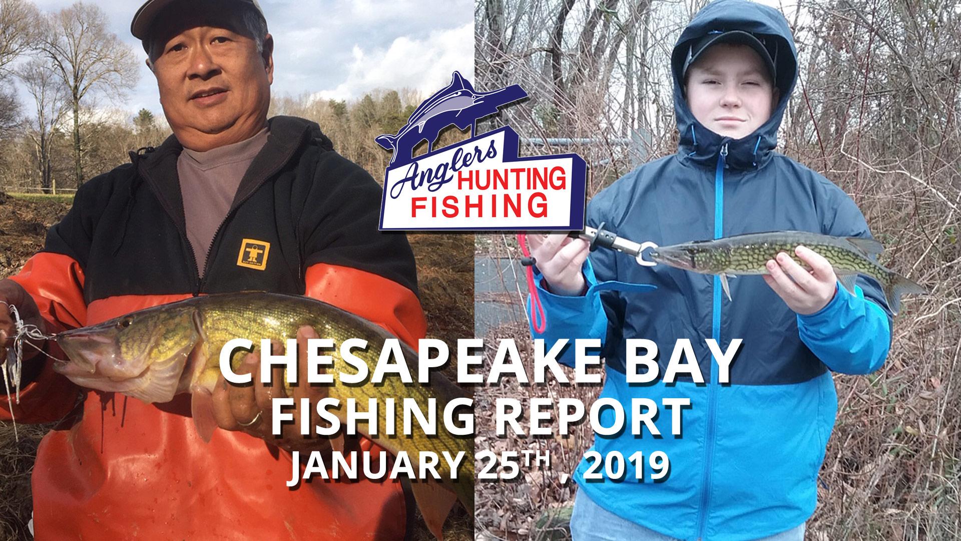 Chesapeake Bay Fishing Report - January 25th, 2019