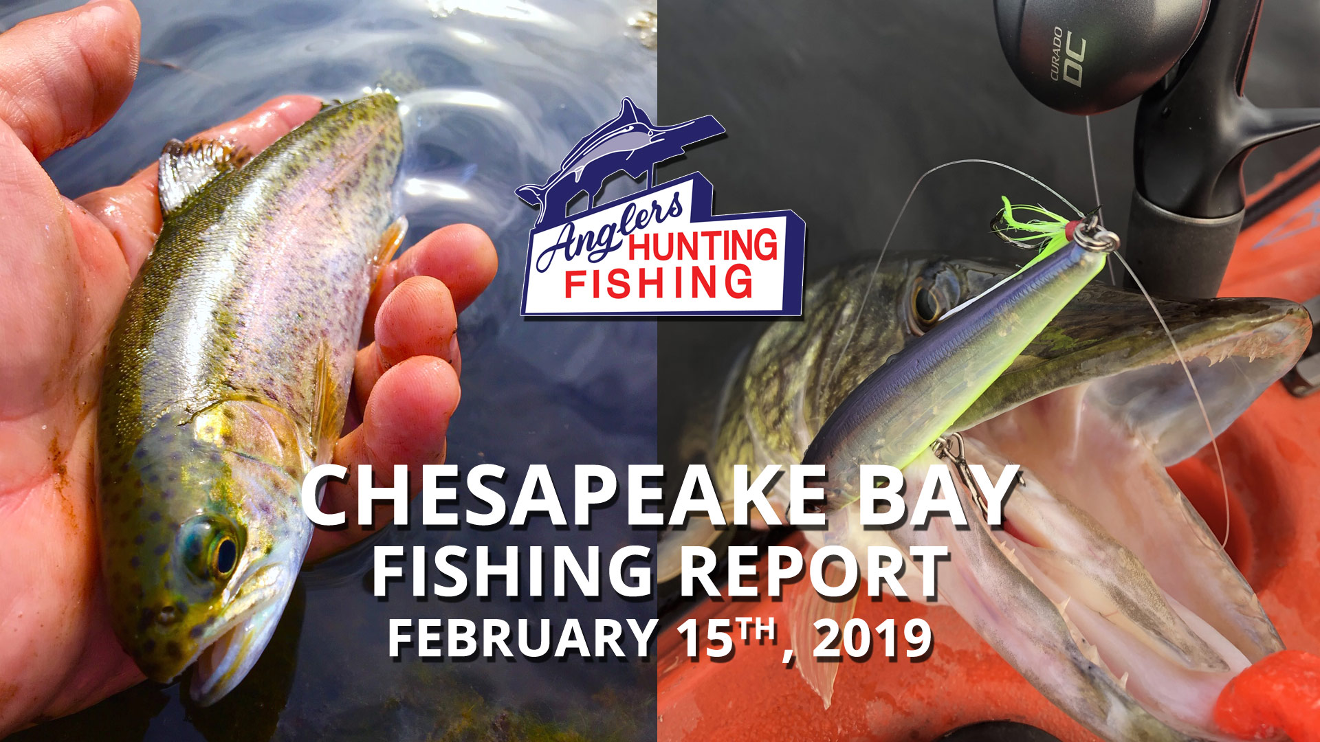 Chesapeake Bay Fishing Report - February 15th, 2019