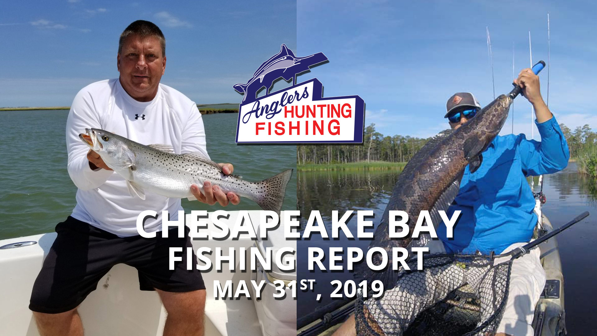 Chesapeake Bay Fishing Report - May 31st, 2019