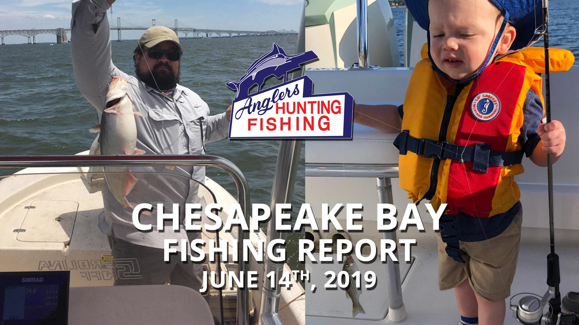 Chesapeake Bay Fishing Report - June 14th, 2019