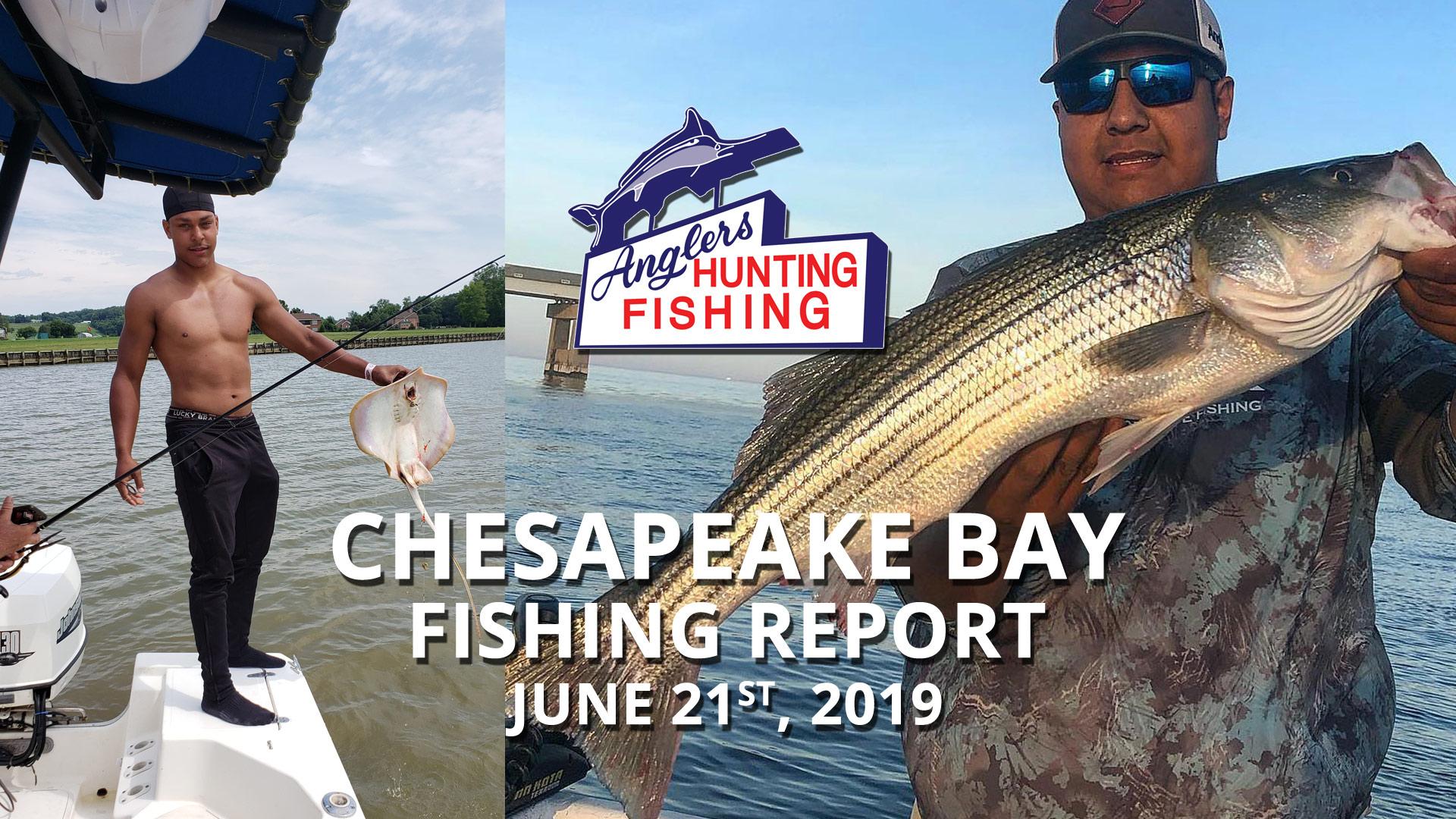 Chesapeake Bay Fishing Report - June 21st, 2019