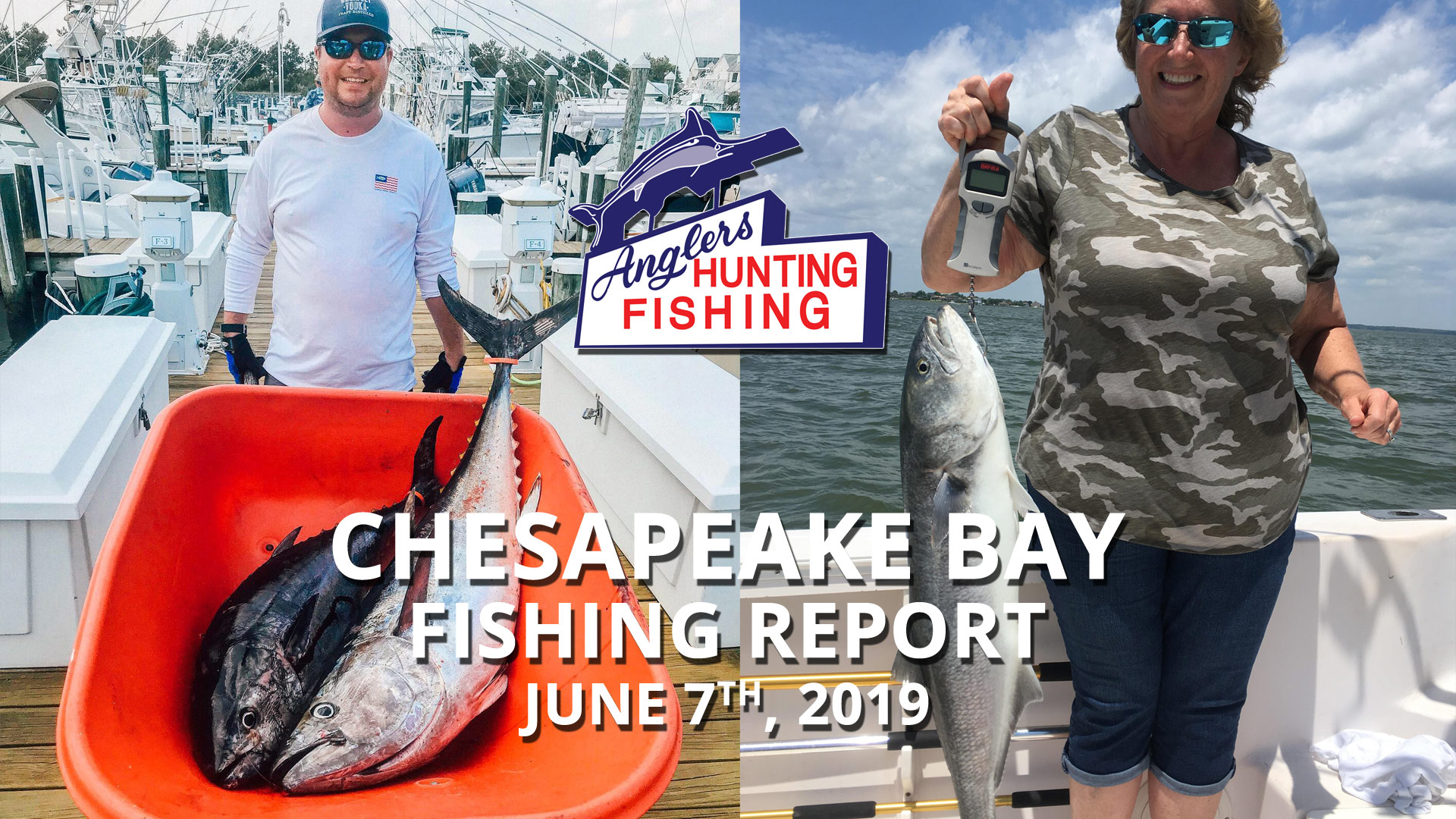 Chesapeake Bay Fishing Report - June 7th, 2019