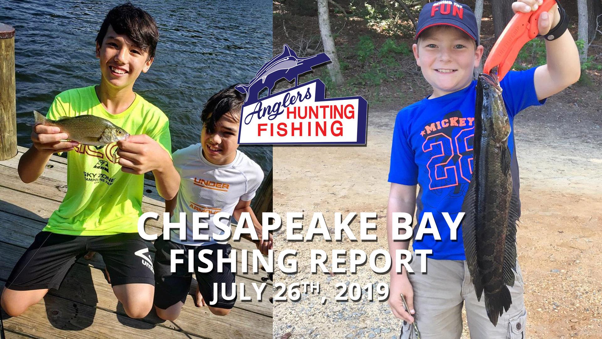 Chesapeake Bay Fishing Report - July 26th, 2019